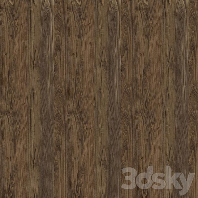 Texture of American walnut