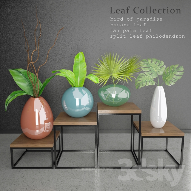 Leaf & Vase