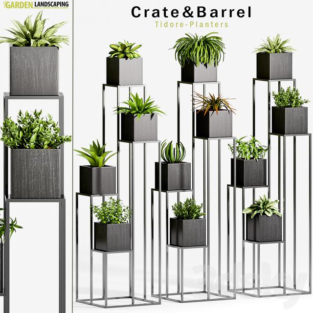 3d models plant plant 33. Black Bedroom Furniture Sets. Home Design Ideas