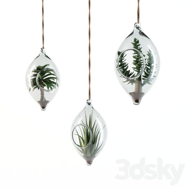 3d models plant sia home fashion hanging succulents. Black Bedroom Furniture Sets. Home Design Ideas