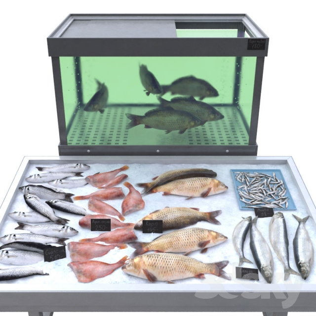3d models shop fish store for Fish stores in ma