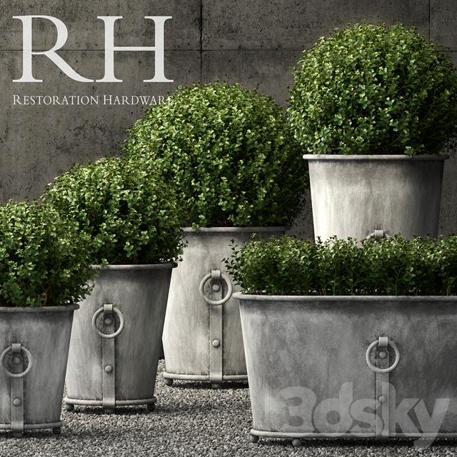 3d Models Plant Restoration Hardware Estate Zinc Ring