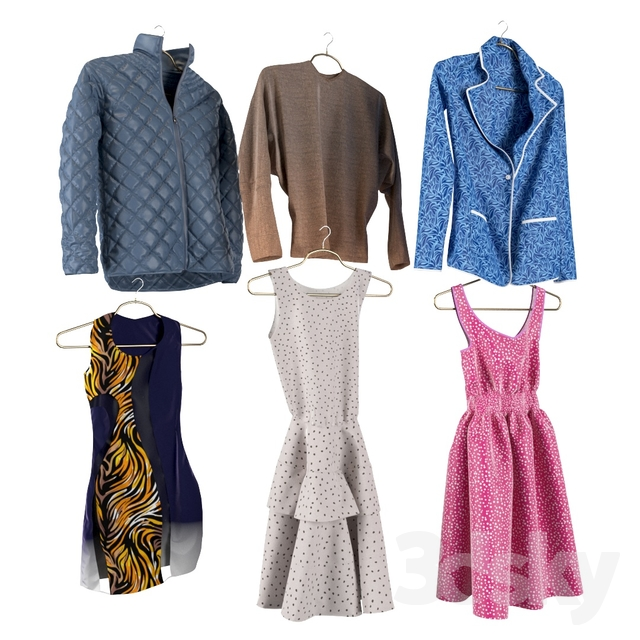 Women's clothing in the wardrobe