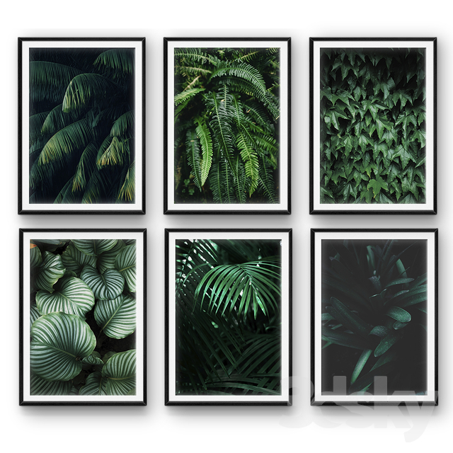 Tropical leaves | set 26