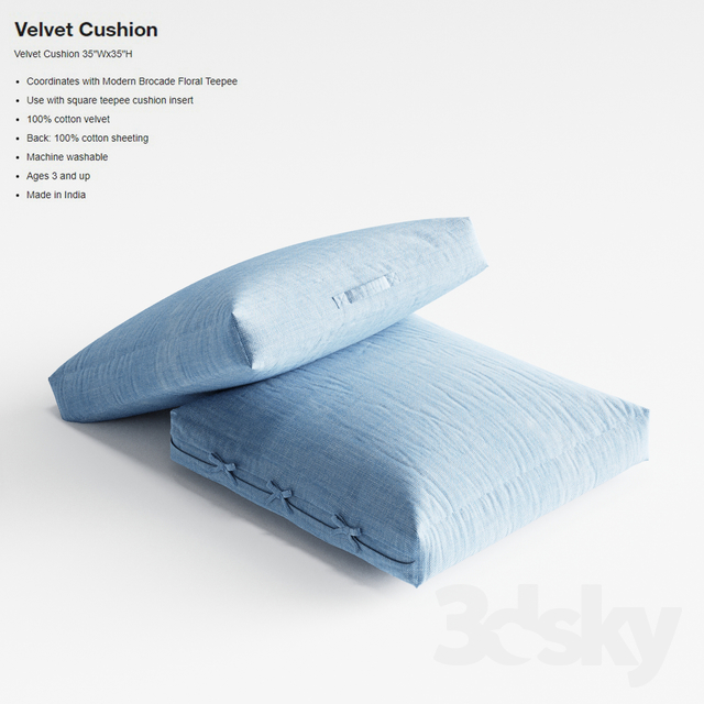 Crate & Barrel Velvet Cushion pillow