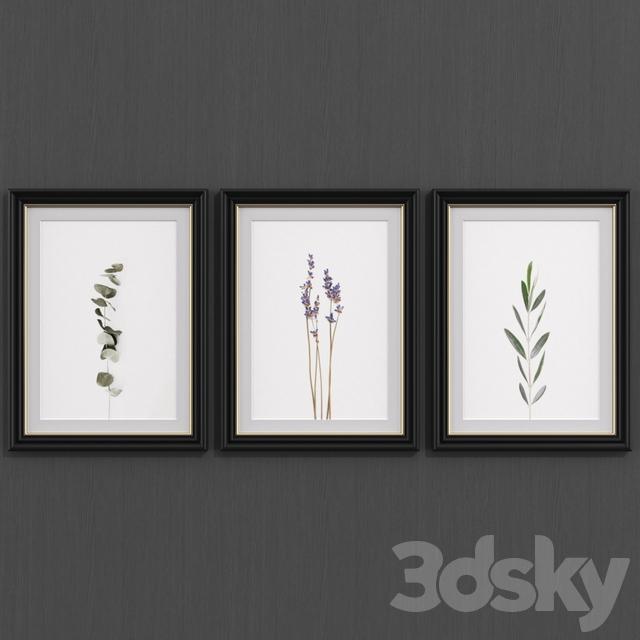 Botanical set