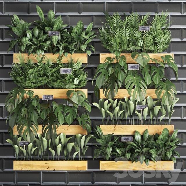 Vertical gardening. 40
