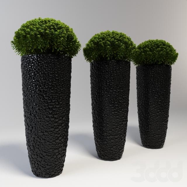 Большая ваза с растением