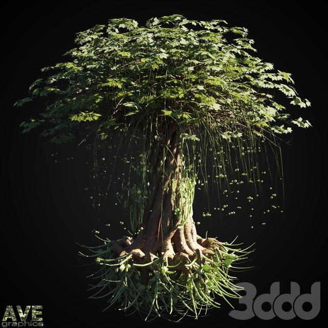 AVE Magic tree