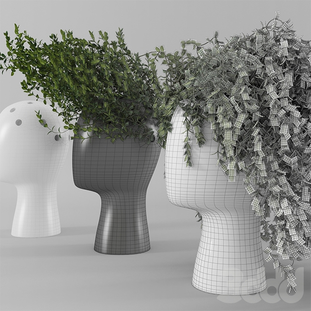 3d Wig Vase With Boxwood Part 2