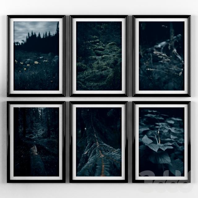 Постеры: природа