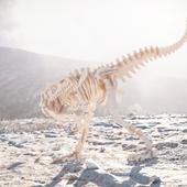 на раскопках аллозавра :)
