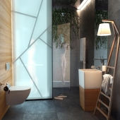 Guests bathroom.