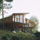 Дом в лесу 2