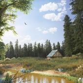 Жизнь в лесу