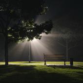 MIDNIGHT LIGHTS
