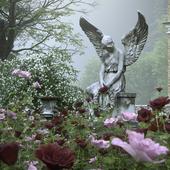 «Пройдемте в сад? Я покажу Вас розам»