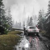 Дорога в поместье
