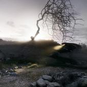Wasteland regrets