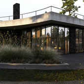 House in Repino, Saint-P