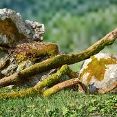 Природа лучший скульптор