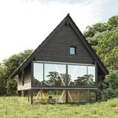 House in the forest (сделано по референсу)