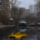 The last autumn day in Boston