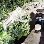 Bamboo | Bar