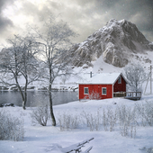 Norwegian Silence