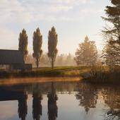 Foggy dawn cgi