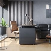 Рабочий кабинет, тёмный интерьер