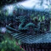 CGI Rain 3D