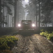 Ночной выезд таксиста в лес