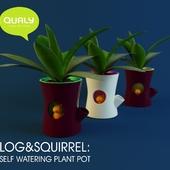 Qualy / LOG & SQUIRREL