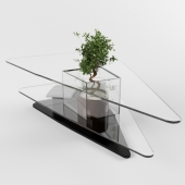 Table glass under the order. For plants.