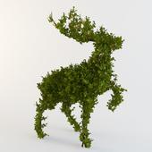 Bush - the Wood deer