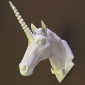 The horse's head