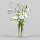 Irises and gypsophila