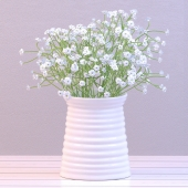 Baby's breath in a vase
