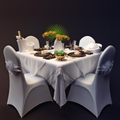 Table appointments Hermes style / Tableware style Hermes