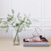 Decorative set (ferns)