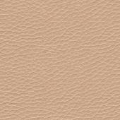 Leather Pelle_alfa
