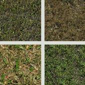 seamless texture of grass