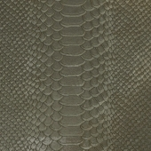 The texture snake skin