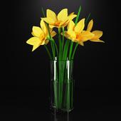 Нарциссы в стеклянной вазе