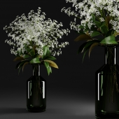 Gypsophila and magnolia leaves in bottle