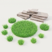 lawn grass with stones