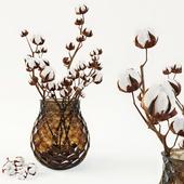 Cotton in a vase