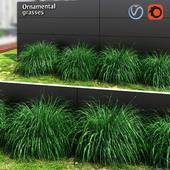 Ornamental grass ball