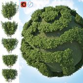 Set of 2 bushes